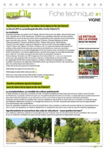 thumbnail of Fiche vigne agrofile
