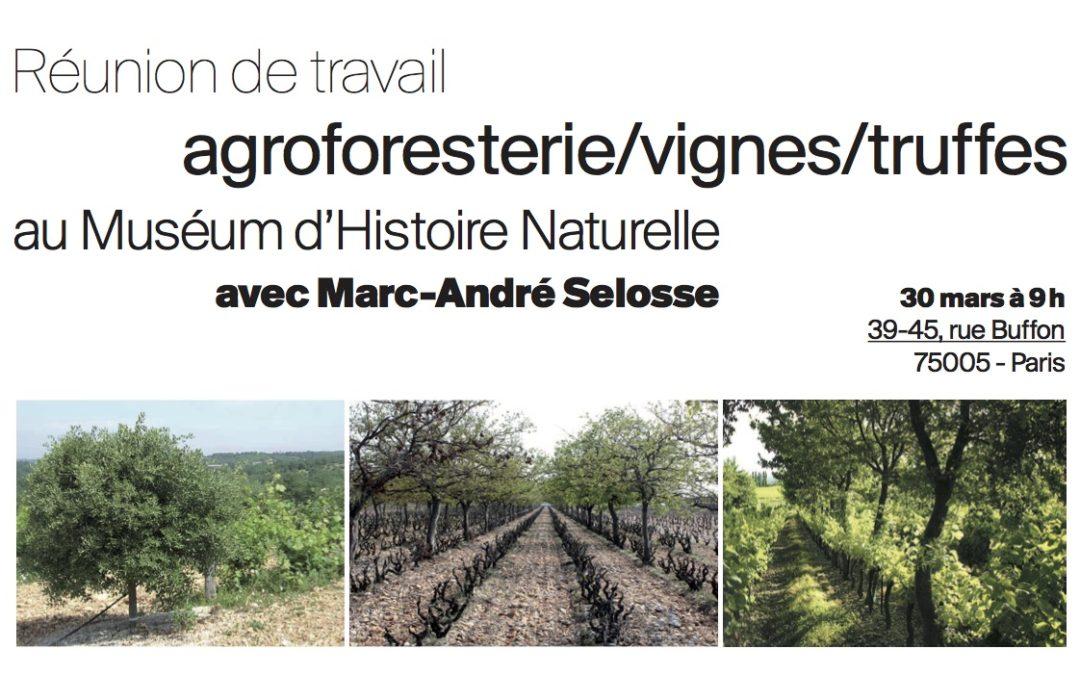 Vigne et truffes, avec Marc-André Sélosse